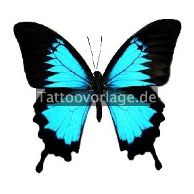 schmetterling tattoos kostenlose tattoovorlagen. Black Bedroom Furniture Sets. Home Design Ideas