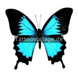 Schmetterlings-Tattoos_20_watermark